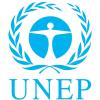 UNEP300